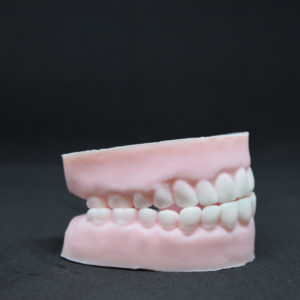 Novelty Glycerin Soap in the shape of Dentures or Teeth.