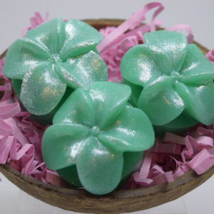 Plumeria flower decorative glycerin soap in coconut shell and paper packaging.